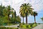 amra-park-hotel-gagra_0_terr_06