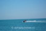 delfin_picunda_more_b