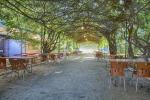 energetik-gagra_pit_summer_cafe_1