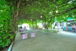 energetik-gagra_pit_summer_cafe_2